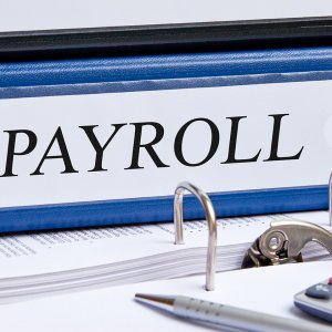 Does the fee mostly go to payroll
